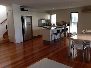 Shared-room for Male at St Lucia Taringa Brisbane South West Preview