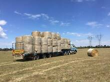 Grass Hay Round Rolls Casey Area Preview