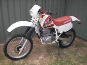Honda XR600, 1995 Many New Parts, Ready for Rego Wentworthville Parramatta Area Preview