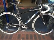 Giant TCR Composite Carbon Road Bike Small Collie Collie Area Preview