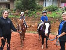 Kids Pony Morning! For children aged 3 - 7 years. Karragullen Armadale Area Preview
