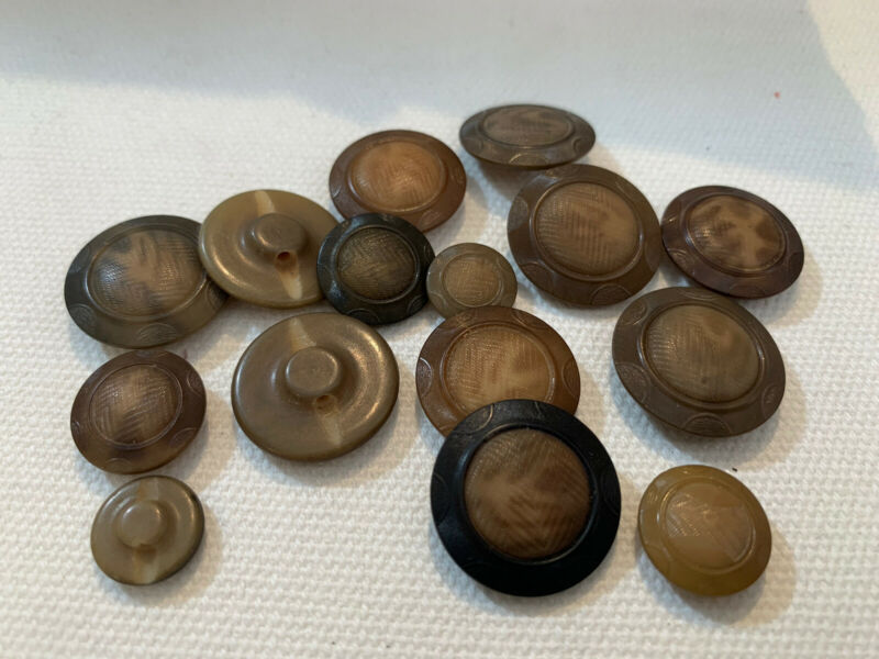 Stunning 17 vintage matching embossed vegetable ivory, tagua nut button Brown