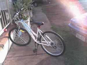 For sale repco horzion 18 speed lady bike Klemzig Port Adelaide Area Preview