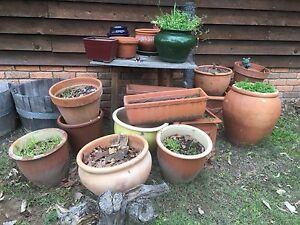 Pots Branxton Singleton Area Preview