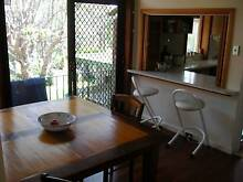Great clean and tidy sharehouse Gladesville Ryde Area Preview