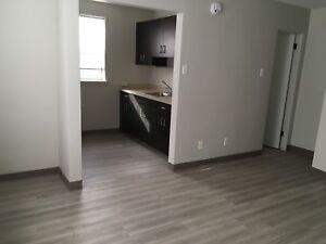 Bachelor Suite Conveniently Close to Downtown!
