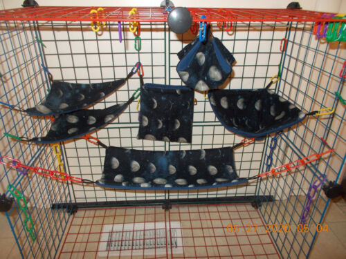 MOON  PHASES   Sugar Glider 6 pc cage set