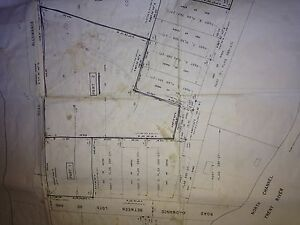 Beautiful 5 Acre lot with woods and field by Trent River Belleville Belleville Area image 2