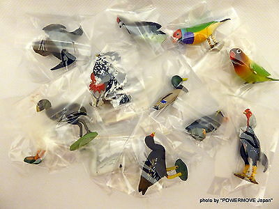 Used Furuta Kaiyodo Choco Egg Choco-Q Bird mini Figure Set of 13 Parrots Parrot