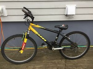 Boy's Leader 21 Speed Mountain Bike