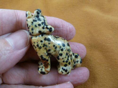 Y-COY-ST-552) spotted Jasper COYOTE gemstone carving FIGURINE gem statue Coyotes