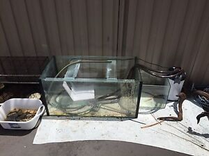 Fish tank with stand/filter/accessories Broadbeach Waters Gold Coast City Preview