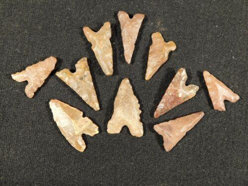 Big Lot of TEN! Ancient Neolithic Tidikelt Arrowhead s 2.25