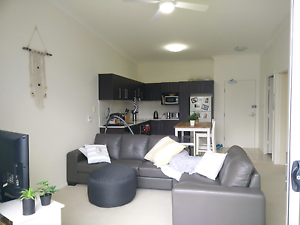 **Private Room Available Now** Surfers Paradise Gold Coast City Preview