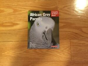 Pet owners African grey parrot guid