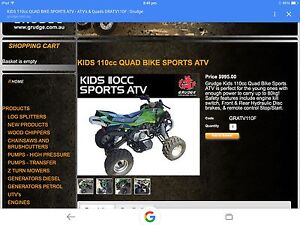 110cc ATV Waterford Logan Area Preview