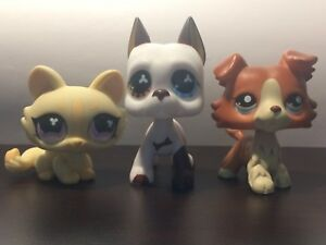 LPS Cat, Great Dane, and Collie