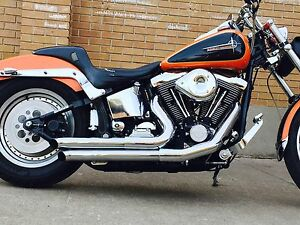 Softail Harley Davidson for sale