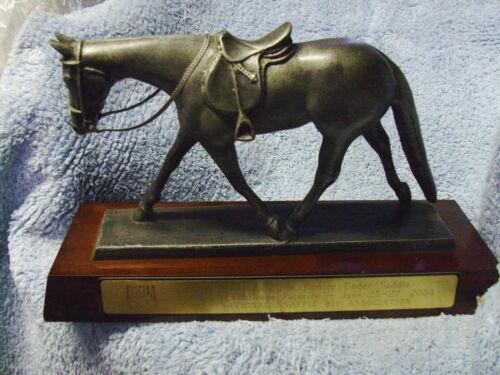 NSBA horse show trophy, Maturity open hunter under saddle, AQHA congress, 2004
