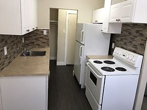 Renovated 2 Bed, 1 Bath Apt for Rent with Balcony