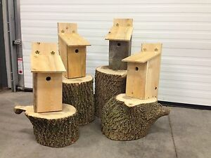 Wood Pecker Nest Boxes
