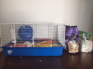Mouse, cage, accessories