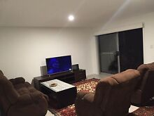 One bedroom  with private bathroom for rent for female only Moorooka Brisbane South West Preview