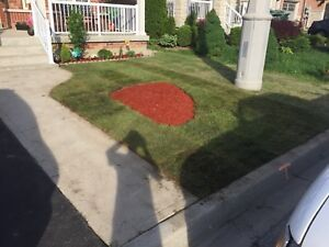 A Couple Landscapers: Gardens, Mulch, Grass, And more