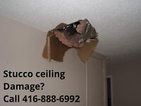 Mold Damage, Water Damage Repair and Painting