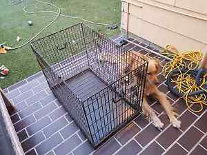 Large dog cage Newcastle East Newcastle Area Preview