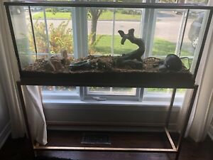 Fish or reptile tank