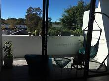 Sunny apartment, great location, private bathroom and parking! Alexandria Inner Sydney Preview