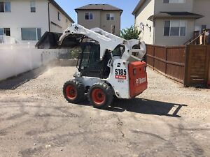 Skid steer bob cat hauling 587-436-3333