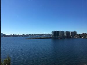 Charming 1 Bedroom HARBOUR VIEW!!!!- Mid-June/July