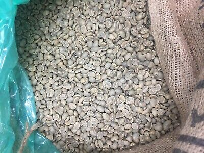 10# HONDURAN Leafy UNROASTED COFFEE.  ORGANIC, FAIR TRADE. SHG/EP.  NEW ARRIVAL