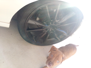 "SELL OR SWAP - 20"" Rims with Treads 245/45/20"" Lynwood Canning Area Preview"