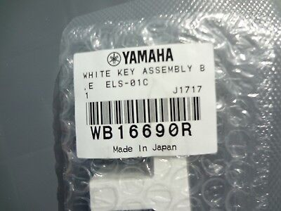 NEW Yamaha Replacement Piano B E Key Tyros2 Motif XF6 XF7 XS6 XS7 WB16690R for sale  Shipping to India
