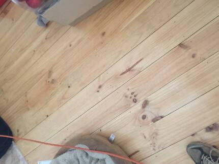 Pine flooring in Plympton in early February