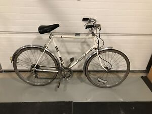 Vintage 10 speed cruiser
