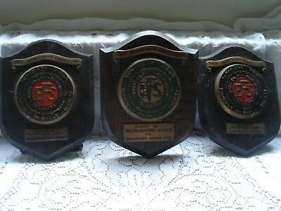 tunbridge wells efs plaques shields coat of arms x 3 vintage wood 1952 1954 1955