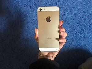 IPhone 5s gold 64gb (perfect condition) Castle Hill The Hills District Preview