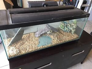 50 gal aquarium with accessories