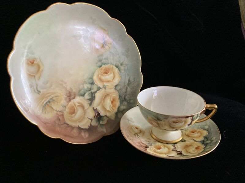 Hand painted floral Limoge plate and matching R.C. Bavaria cup and saucer