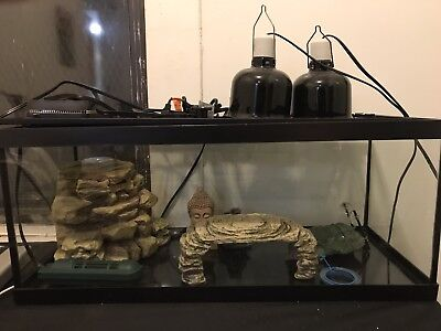 20 Gallon Aquarium Fish Tank Reptile  Turtle    No shipping pickup only