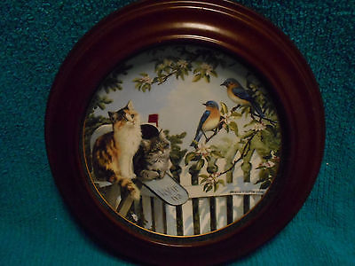 Vanhygan & Smythe Frame Kitty Cat Plate Bradex Special Delivery Nosy Neighbors