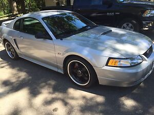 Beautiful Mustang GT For Trade.
