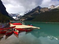 Cheapest Car Rental/ tour guide for Canadian Rockies