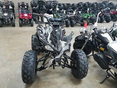 ATV 125cc MID SIZE ATV SPORTS Quad Kids 4 wheeler FREE SHIP 125CC ATV CHEETAH