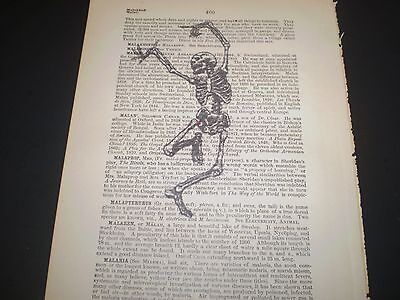 1893 ORIGINAL DICTIONARY BOOK PAGE WITH VINTAGE ARTWORK OF A DANCING - Skeleton Dance Costume