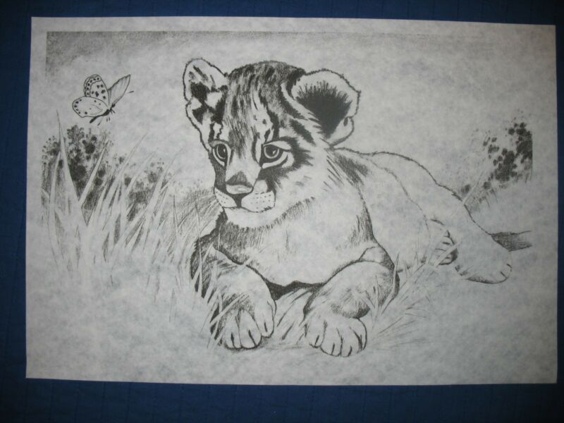* TRI CHEM 2531 B LION CUB BUTTERFLY IN THE GRASS Picture to paint TRICHEM